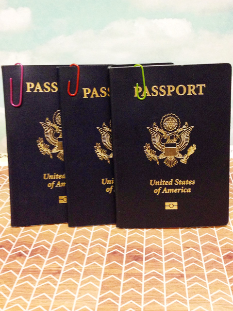 The easiest solutions are the simplest. Using different colored paperclips to distinguish different family member's passports.